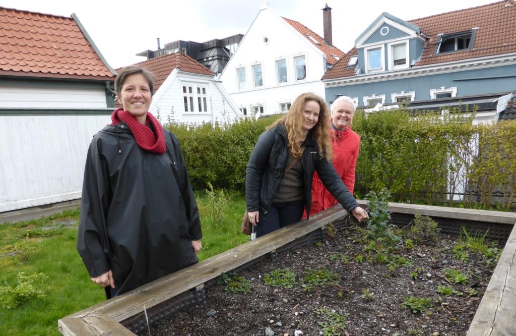 Her skal det vokse og gro i sommer. Med i kjernegrupper er Anne-Laure Simonelli, Synnøve Misje og Elin Hestenes. Foto: Eva Johansen