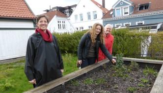 – Vil ha deg med på bærekraftig hagearbeid