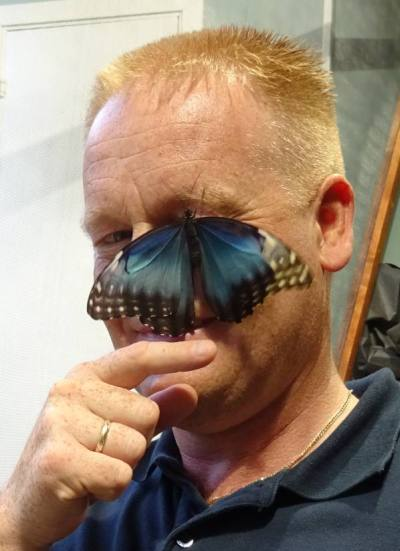 Direktør Geir Olav Melingen blir utsatt for sommerfuglklatring. Foto: Eva Johansen