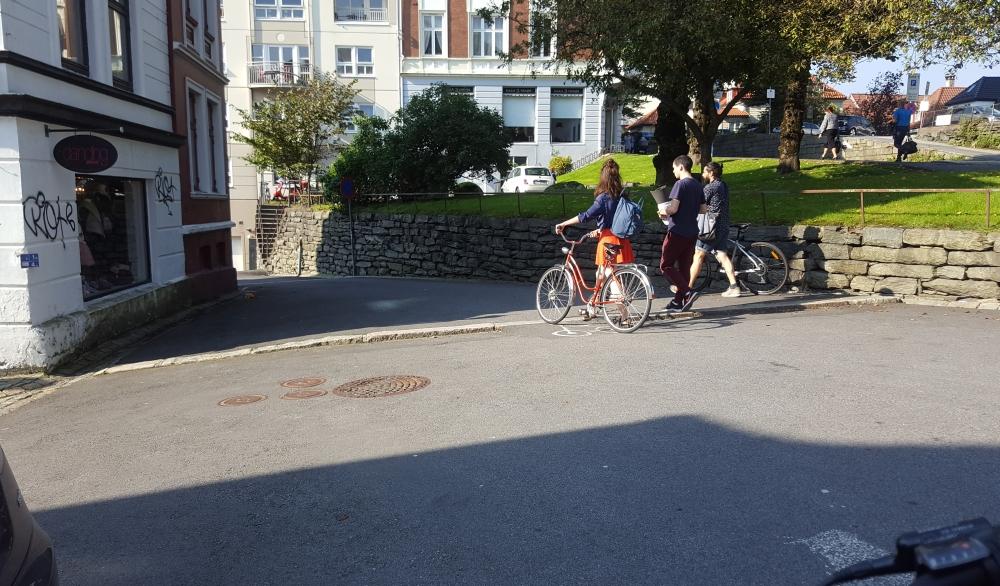 vmurallemming_sykler