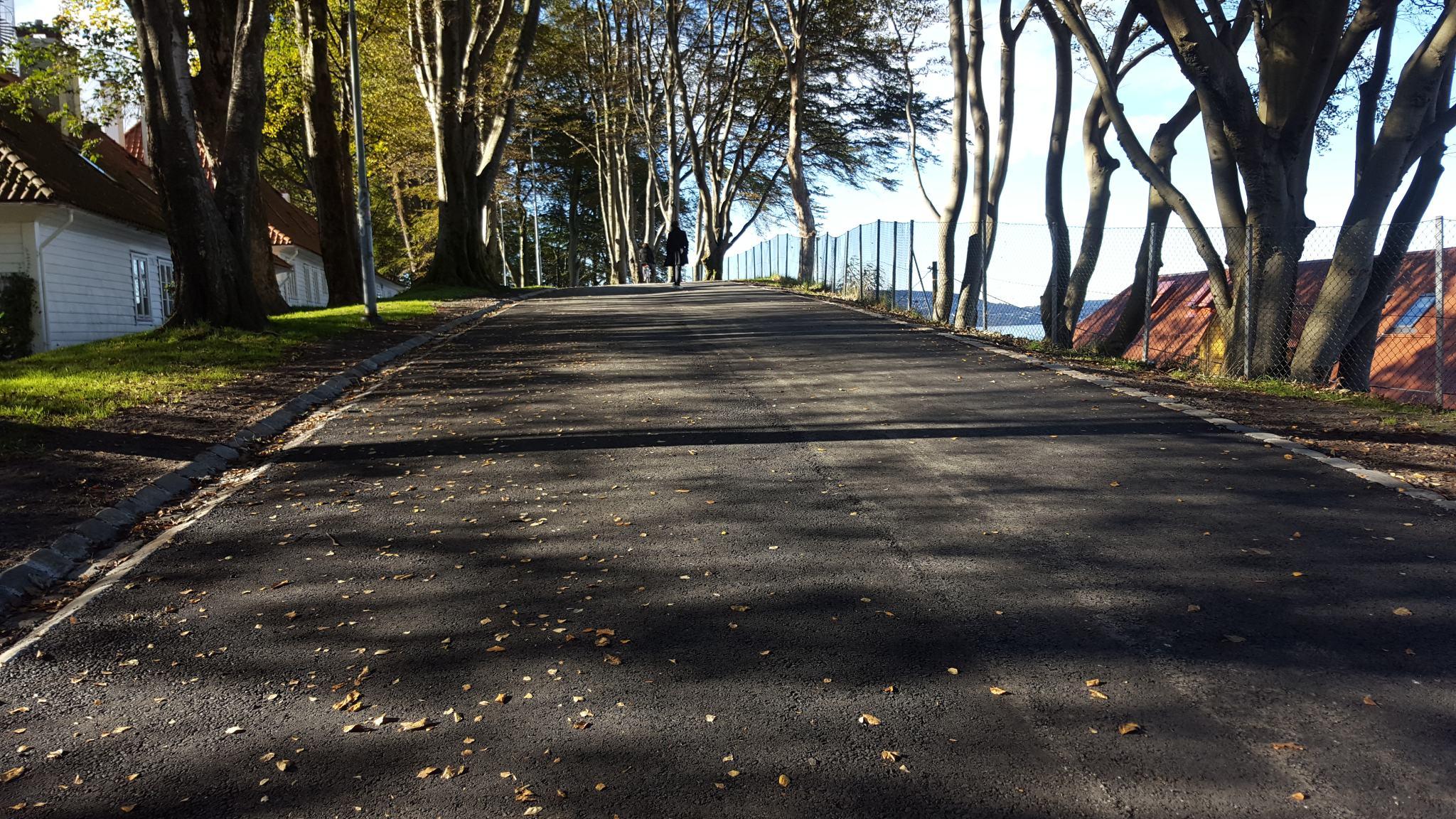 Nå er det asfalt som møter deg i starten av parken. Foto: Eva Johansen