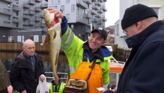 Endelig fisk direkte fra båt i Bergen